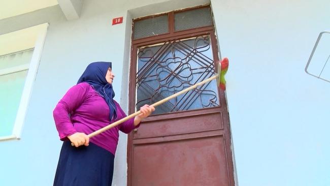 Beykoz'da tırtıl istilası