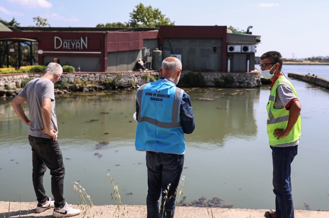 Büyükçekmece Gölü'ndeki kirliliğin nedeni araştırılıyor