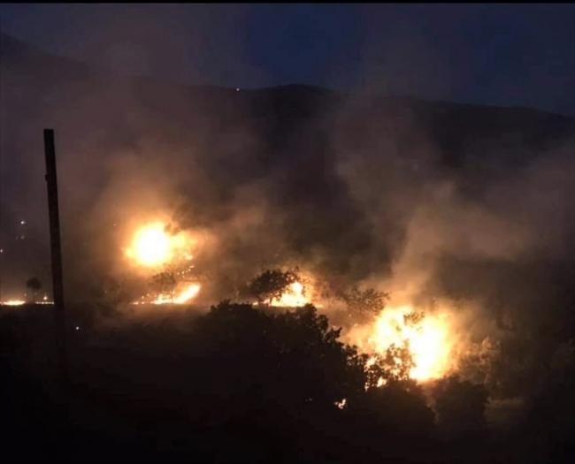 İzmir'de incir ve zeytin ağaçlarının bulunduğu 40 dekarlık alan yandı