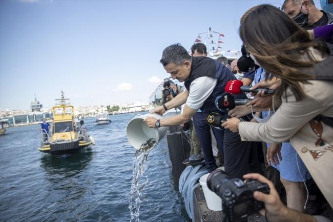 Marmara Denizi'ne 15 ton midye bırakıldı