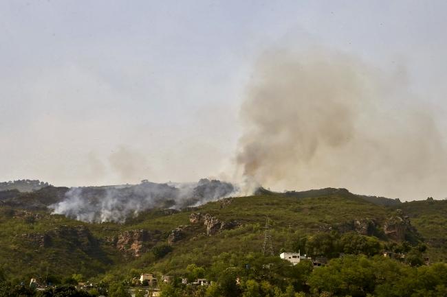 Pakistan'da orman yangını