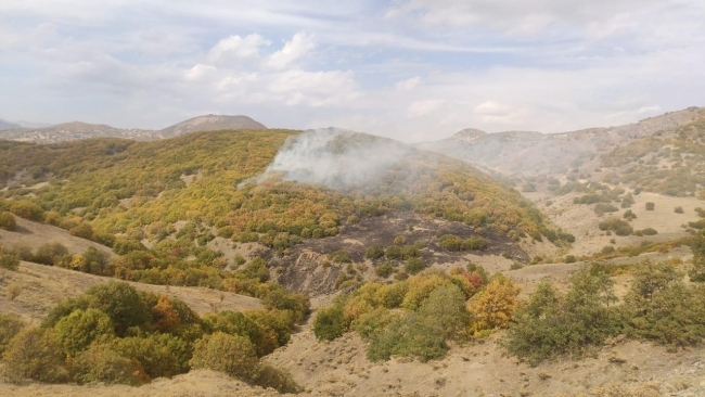 3 of the forest fires at 4 different points in Bingöl were extinguished