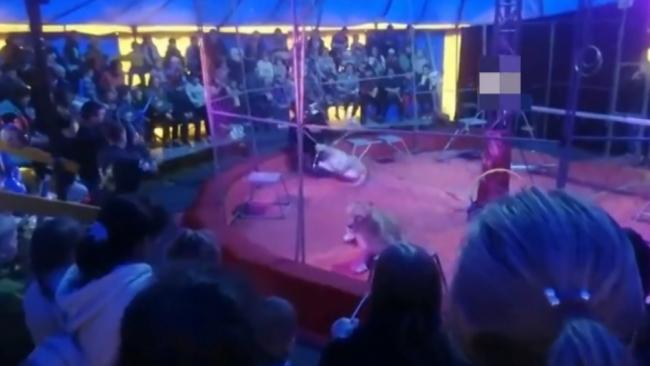 Rusya'da sirkteki aslan eğitmene saldırdı