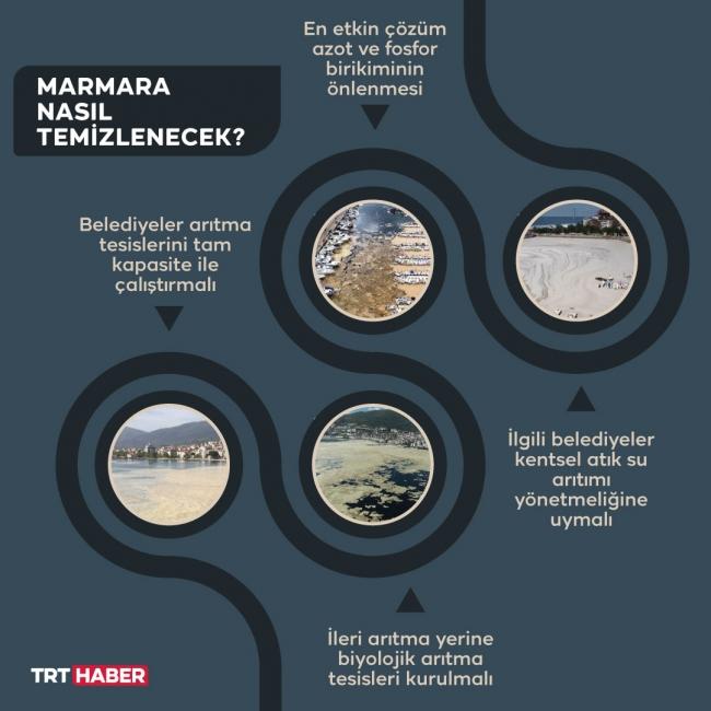 Grafik: Şeyma Özkaynak/TRT Haber