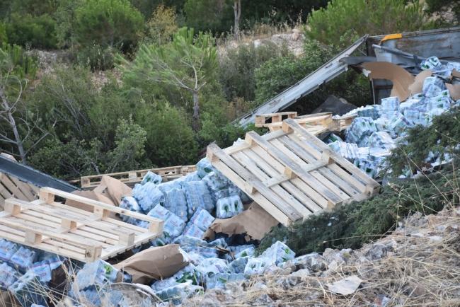 Sürücüsü uyurken freni boşalan tır ormanlık alana devrildi