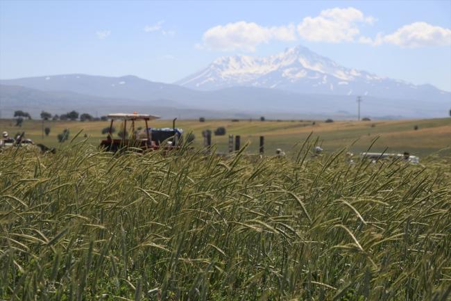 20200706 2 43303804 56472390 Web Türkiye dünyanın 80 ülkesine tohum ihraç ediyor 2