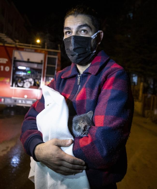 Kedi Cengizhan kız kardeşlerin hayatını kurtardı