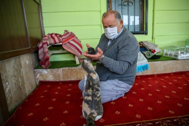 Şeref Dede yardıma muhtaç kedilere mescitte bakıyor