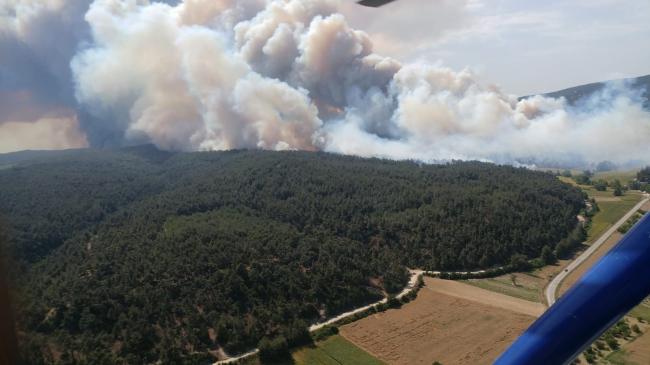 8bfbdc7e e02c 4eb3 968a 20c1928f94f2 Gelibolu Yarımadası'nda orman yangını 1