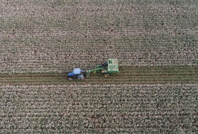 Dünya kuraklık ve salgın sebebiyle gıda stoklarını artırıyor