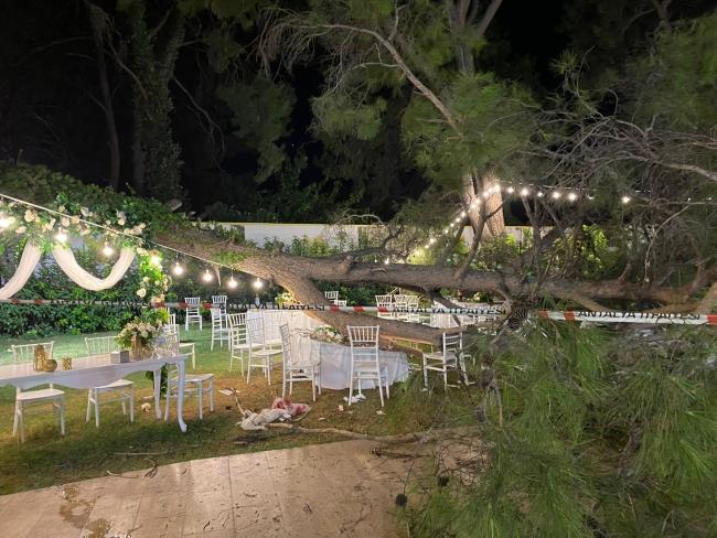 Antalya'da düğüne katılanların üzerine ağaç devrildi: 1 ölü, 9 yaralı