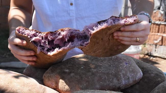 Kırmızı patatesten ekmek, tatlı ve makarna yaptılar