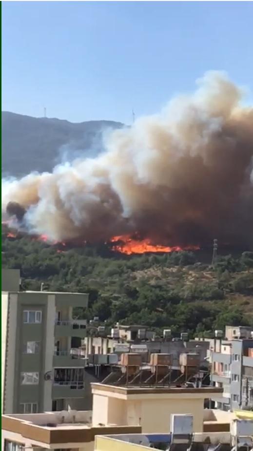 Hatay'da orman yangını: 3 ilçeye yayıldı, yerleşim yerleri tehdit altında