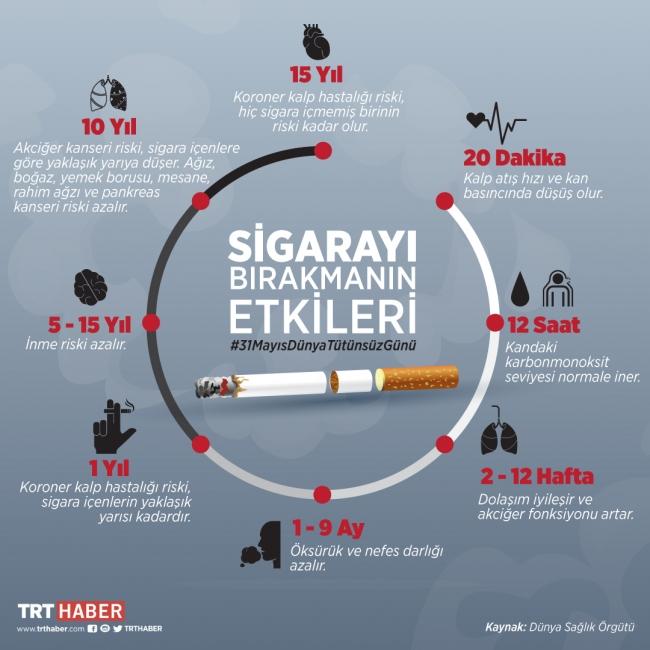 Grafik: TRT Haber / Nursel Cobuloğlu