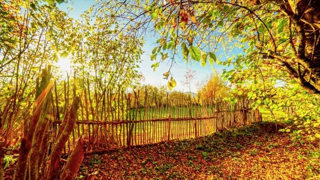 Borçka Haberleri: Karagölde sonbahar güzelliği 26