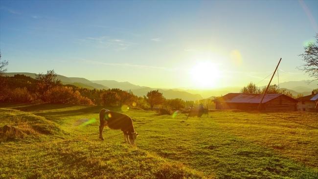 Borçka Haberleri: Karagölde sonbahar güzelliği 75