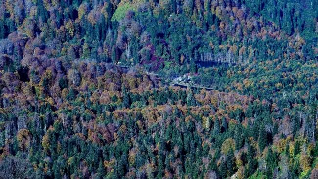 Borçka Haberleri: Karagölde sonbahar güzelliği 58