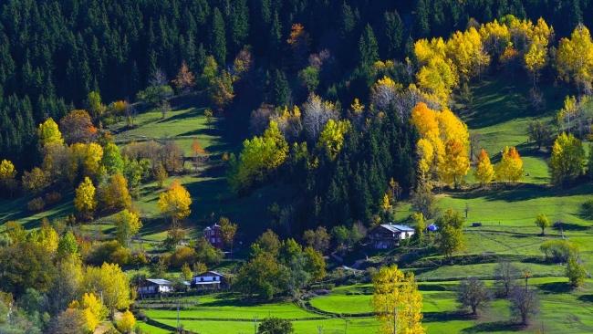 Borçka Haberleri: Karagölde sonbahar güzelliği 18